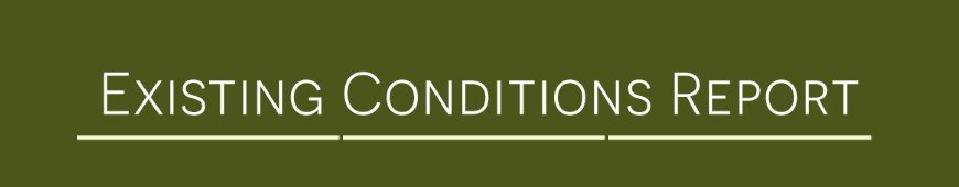 Read the Existing Conditions Report